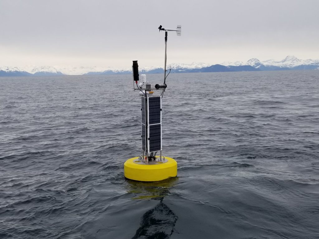 Naked Island Weather Buoy