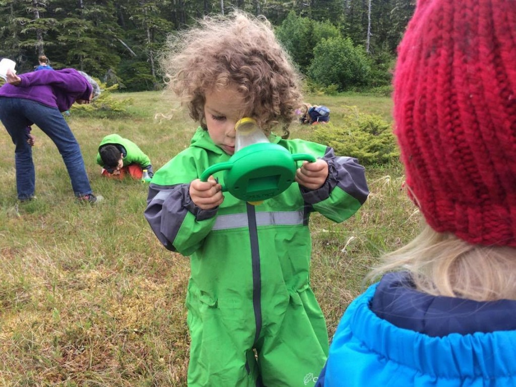 On the 'Bug Safari,' kids used these specialized magnifiers to explore the details that make bugs unique. Photo credit: Shannon Polhemus