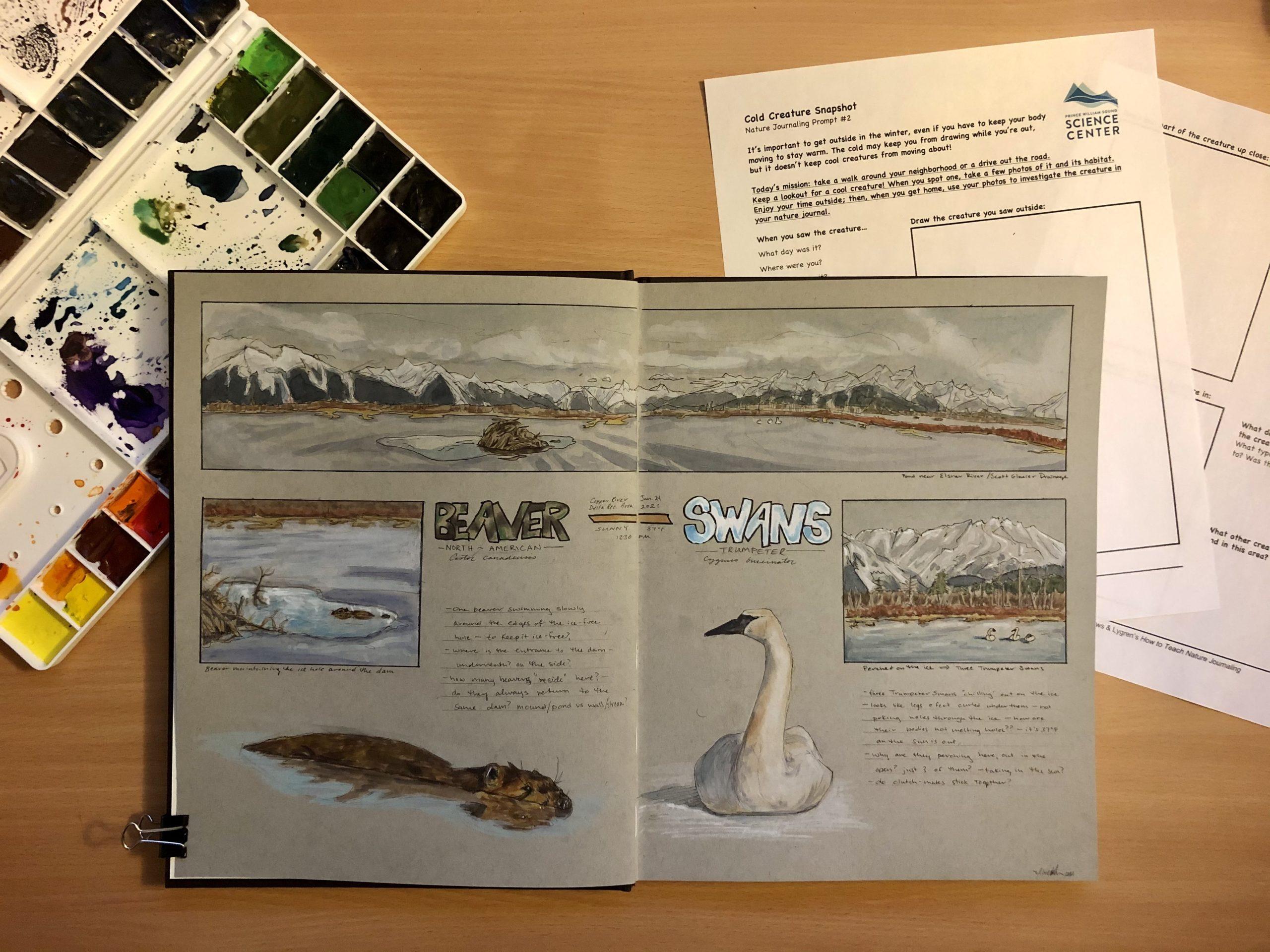 Nature Journaling